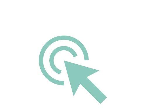 Online Birth Plan Icon